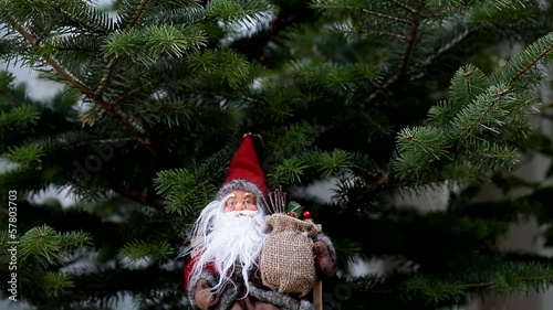Santa claus on pine tree
