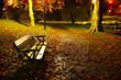 vacant park bench in autumn
