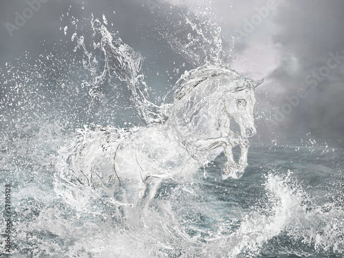 Obraz Horse from water.