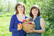 women with basket of harvested apples