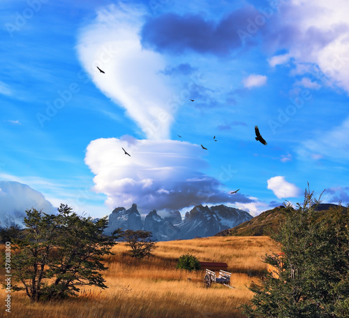 Magic cloud and flocks of condors