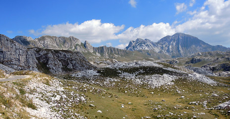 wildes Montenegro - wilderness in Montenegro