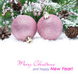 pink Christmas balls in the snow and spruce branches, isolated
