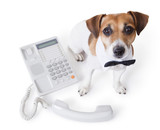 white collar near office phone. call center