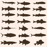 vector set of fish silhouettes