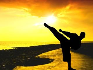 Der Weg des Karate