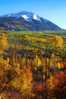 Scenic Kebler pass area in autumn time