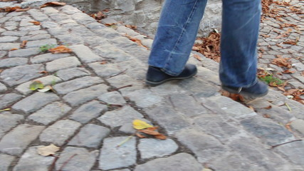 Walking on a paved alley covered by dead fallen leaves
