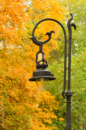Lantern in the park autumn