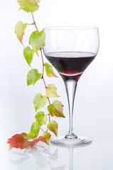 Rotwein im Glas 1