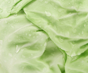 Close up of green cabbage.