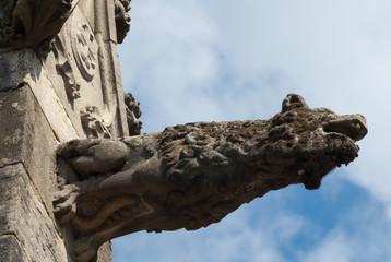 Gargouille, loup, cathédrale, saint Lazare