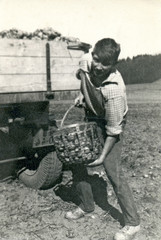 On the Brigade (student pouring potatoes) - circa 1960