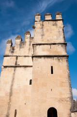 Alcazar of Reyes Cristianos of Cordoba, Spain