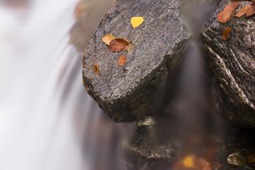 la cascata in autunno