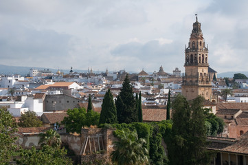 Cordoba seen from the Alcazar (Spain)