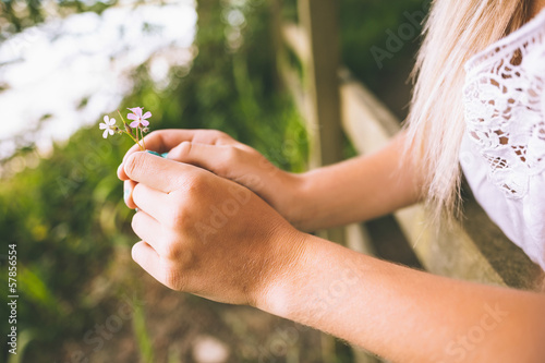 Close up of female hands holding little flower
