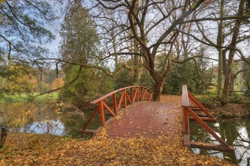 Creek and wooden bridge in autumn forest