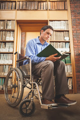 Focused man in wheelchair looking at a book