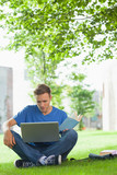 Calm handsome student sitting under tree studying