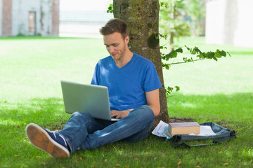 Content handsome student sitting under tree using laptop