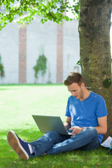 Calm handsome student sitting under tree using laptop