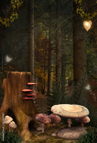 Enchanted nature series - Enchanted mushrooms place