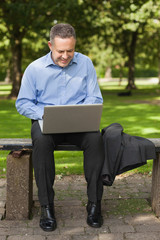 Happy lecturer sitting on bench using laptop on campus