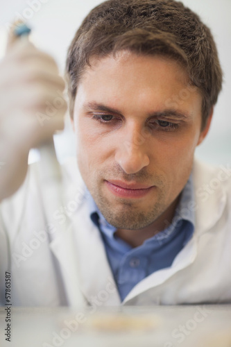 Concentrated male scientist using a pipette