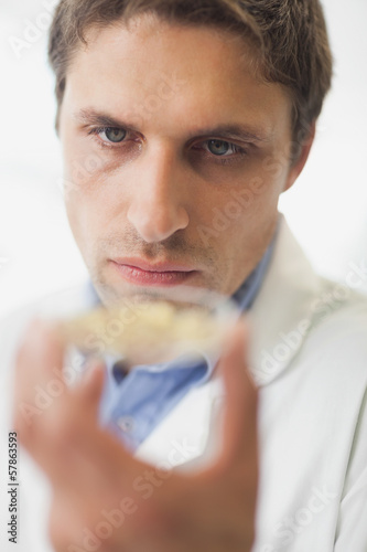 Male scientist presenting a petri dish