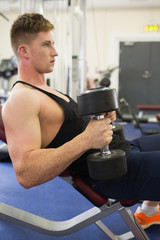 Muscular man sitting on bench training with dumbbells