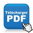 TELECHARGER PDF ICON