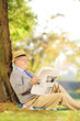 Smiling senior gentleman seated reading a newspaper at autumn