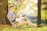 Smiling senior gentleman seated reading a newspaper in a park