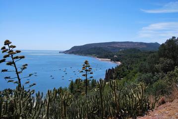 Côte Portugaise