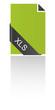 XLS Icon Banderole geschwungen