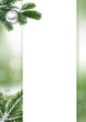 Weihnachtsdekoration, Saison, Grußkarte, grün