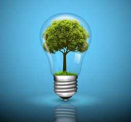 Light bulb with green tree growing inside