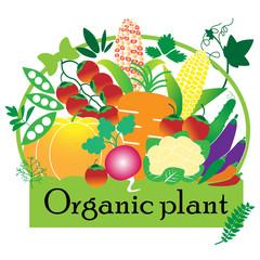 Organic plant set