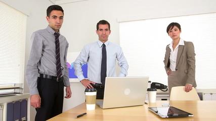 Portrait of succesful business team