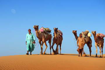 cameleers in desert