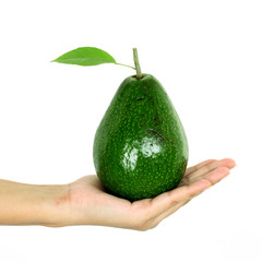 Hand holding avacado against white