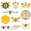 Set of honey labels, badges and design elements