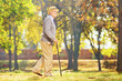 Smiling senior gentleman walking with a cane in a park