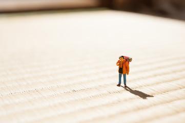 畳の上の旅行者