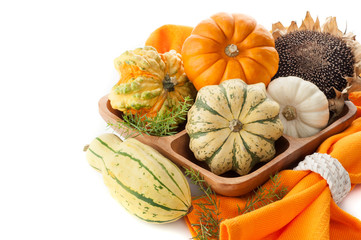 Assorted Ripe pumpkins with sunflower