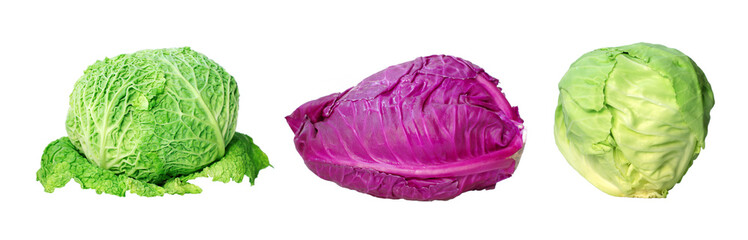 set of variety cabbage