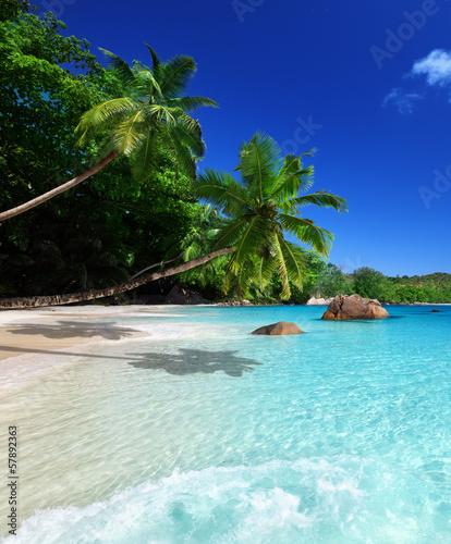 Sticker beach at Praslin island, Seychelles