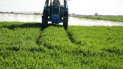 Tractor spray fertilize field with pesticide chemical in evening