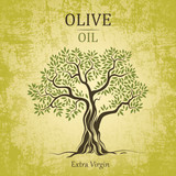 olive tree. Olive oil.Vector  olive tree. For labels, pack.